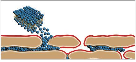 DMS sulautuu helposti ihon sarveiskerrokseen.